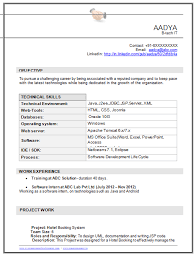 Html Resume Samples by Sample Template Of An Excellent B Tech Information Technology