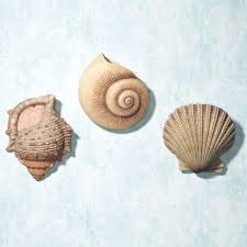 decoration seashell wall decor home decor ideas