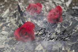 from ashes beauty from ashes project asah creations