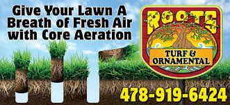 warner robins lawncare roots turf and ornamentalroots turf and