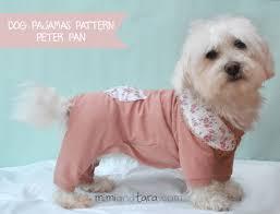 dog pumpkin costume patterns free pdf download