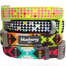 Comfortable Dog Collar Best Large Breed Collars For Your Dog