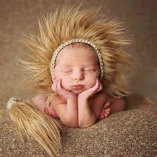 Baby Lion Costume Popular Lion Hat Baby Buy Cheap Lion Hat Baby Lots From China Lion