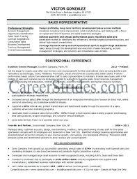 resume bullet points resume bullet points resume bullet points exles berathencom