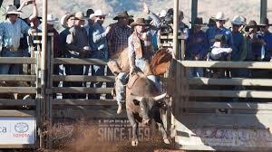 mount isa rodeo possibly best yet photos video bendigo advertiser