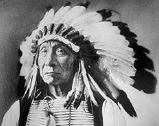 chicken feathers native american headdresses