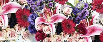 flowers wholesale wholesale flowers rjcarbone