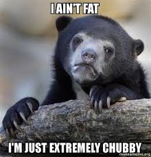 Chubby Meme - i ain t fat i m just extremely chubby confession bear make a meme
