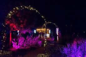 enchanted forest christmas lights review holiday light show transforms descanso gardens this season