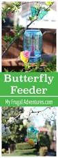 learn how to make a butterfly feeder from