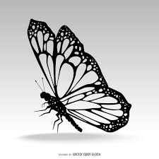 isolated butterfly silhouette illustration vector