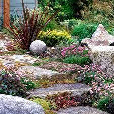 Drought Friendly Landscaping by 34 Best Xeriscaping Ideas For Eco Friendly Landscaping Images On