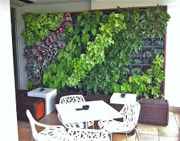 Vertical Garden Indoor - how to create a vertical garden for an apartment hipages com au