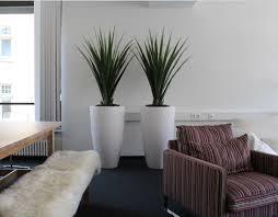 Moderne K He Kaufen Raumbegrünung Innenraumbegrünung Objektbegrünung