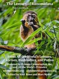 all the world s primates home