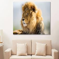 amazon com posters and prints printed animal lion paintings