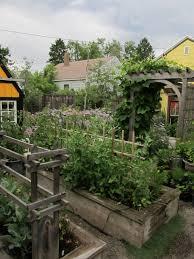 Inside Vegetable Garden by Montana Wildlife Gardener Scenes From The Garden Mid July