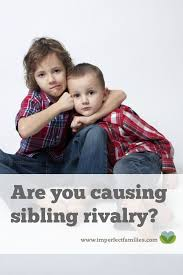 best 25 sibling rivalry ideas on sibling fighting