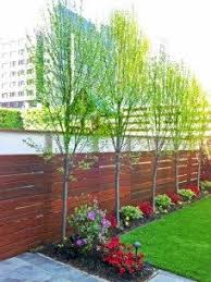 Small Backyard Landscaping Ideas Ideas For Small Rectangular Garden Beautiful Backyard Landscaping