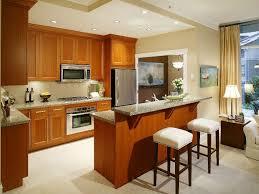 modren kitchen design ideas in sri lanka cabinet pantry to decorating