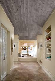 ideas for ceilings 16 best ceilings images on pinterest loft ideas ceiling ideas