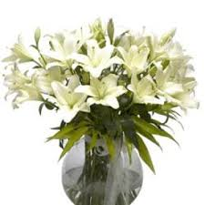 Lilies Flowers Flower Delivery In Bangalore Lilies Flowers To Bangalore Send