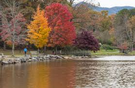 asheville 2017 fall color report u0026 forecast scenic views