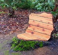 Stump Chair Douglas Fir Chair 2