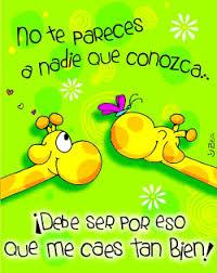 imagenes de amistad jirafas me caes bien amistad comentarios en español imágenes