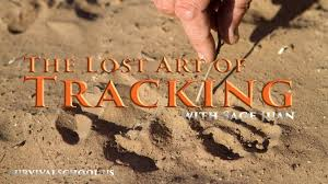 the lost art of tracking survival