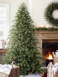 balsam hill color clear lights brewer spruce tree balsam hill