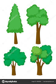 four different types of trees u2014 stock vector blueringmedia