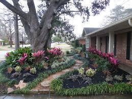 residential tropical landscape design houston u2014 home landscapings