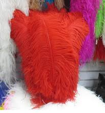 Ostrich Feather Centerpieces Wholesale by Ostrich Feather Centerpiece Online Shopping The World Largest