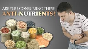 why you should avoid lectins in your diet drjockers com
