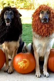 378 best etsy halloween images on pinterest halloween ideas