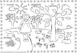 spring worksheet worksheets
