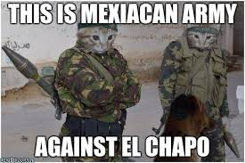 Soldier Meme - soldier cats meme generator imgflip