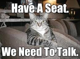 Talking Cat Meme - animal whispering