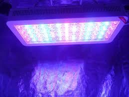 advanced platinum led grow lights advanced platinum led grow lights review 420 friends