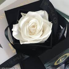 Roses In A Box Incredible Roses That Last A Year After Being Soaked In Special