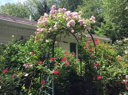 Garden With Trellis Recent Events Wyckoff Garden Club