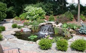 Small Water Ponds Backyard Water Garden Supplies Fish Pond Supplies The Pond Guy Small
