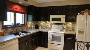 Antique White Cabinets With White Appliances by Cabinet Alluring Oak Kitchen Cabinets White Appliances Pleasing