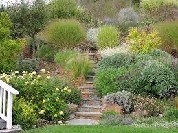 ornamental grass garden ideas landscape traditional with patio