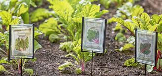 make your own garden markers with these three easy diy ideas
