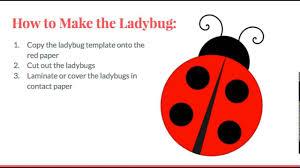 kindergarten math ladybug number recognition youtube