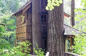 Treehouse Point Wa - treehouse point issaquah wa 98027 yp com