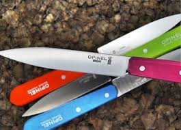 Opinel Kitchen Knives Review Best Sources For Knives 2011 Apartment Therapy