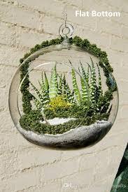 4 inch hanging air plant globe terrarium 4 5 inches 6 inch diy